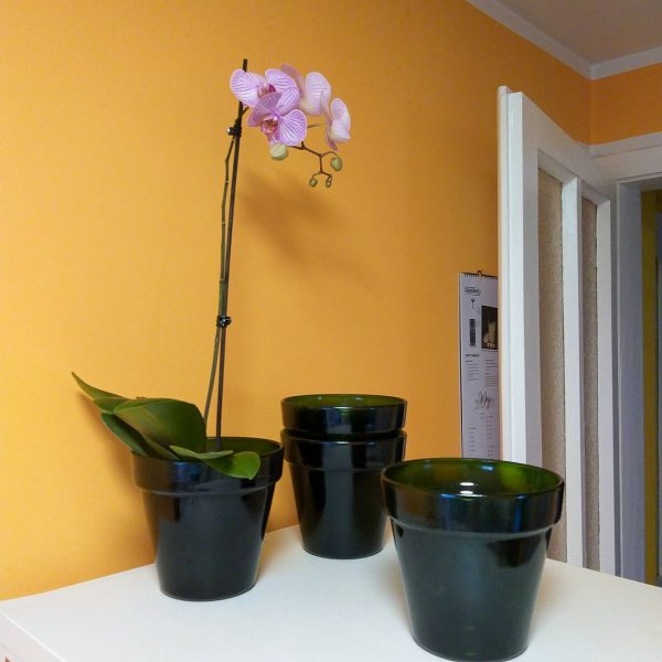 1 of 4 Vintage Orchid Pots, Green Glass Orchid Vase, Aldo Franco Design, Italy 80s
